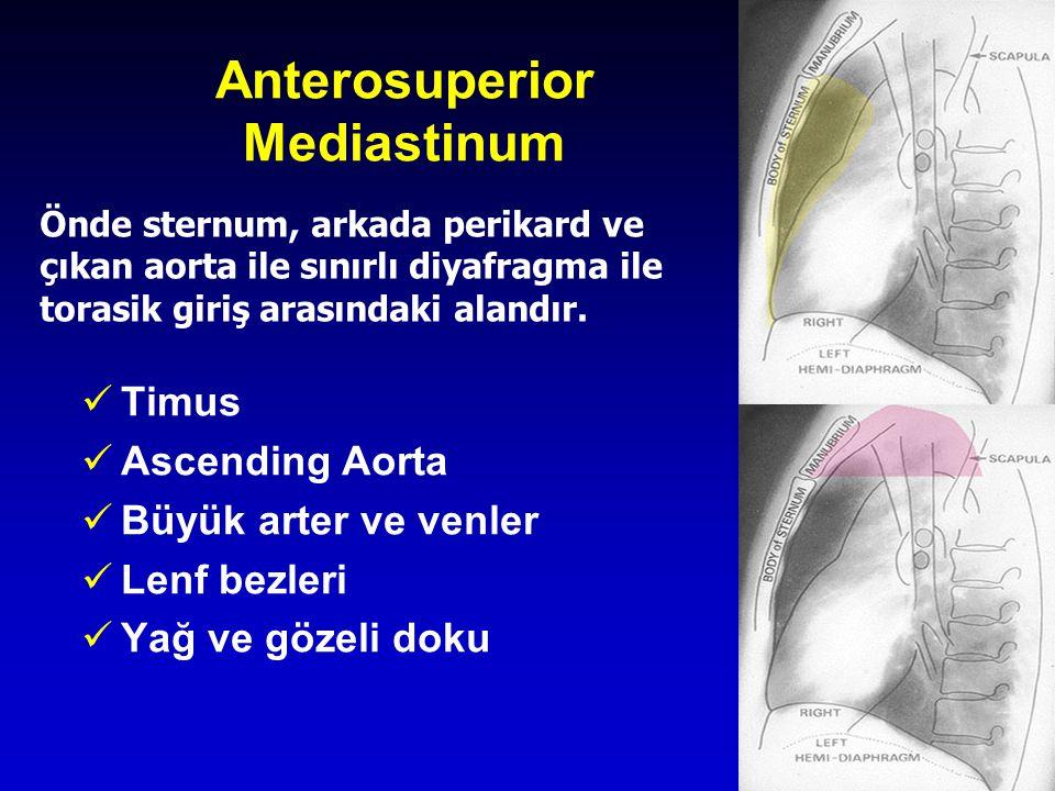 Anterosuperior Mediastinum