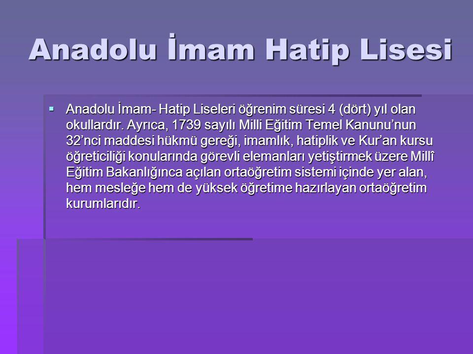 Anadolu İmam Hatip Lisesi