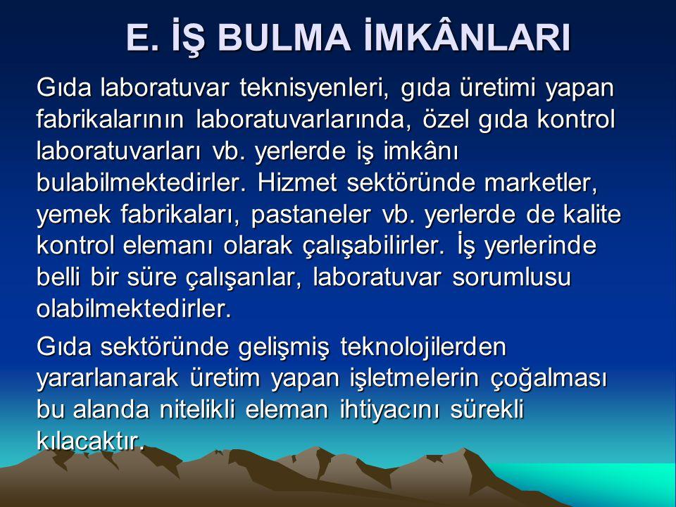 E. İŞ BULMA İMKÂNLARI
