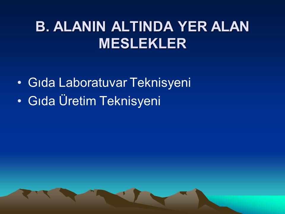 B. ALANIN ALTINDA YER ALAN MESLEKLER