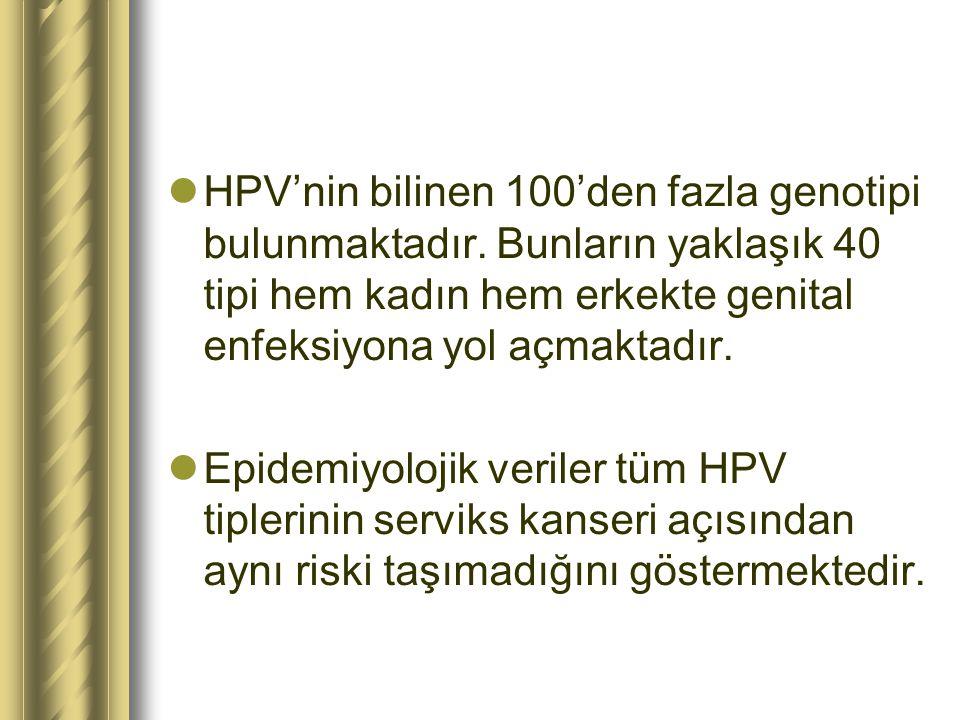HPV'nin bilinen 100'den fazla genotipi bulunmaktadır
