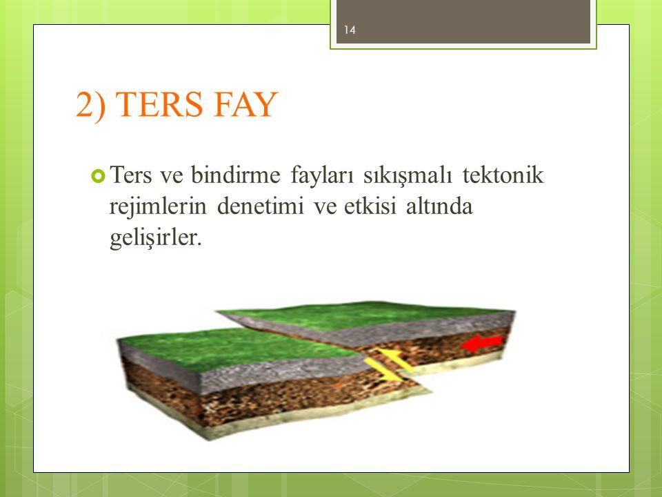 2) TERS FAY Ters ve bindirme fayları sıkışmalı tektonik rejimlerin denetimi ve etkisi altında gelişirler.