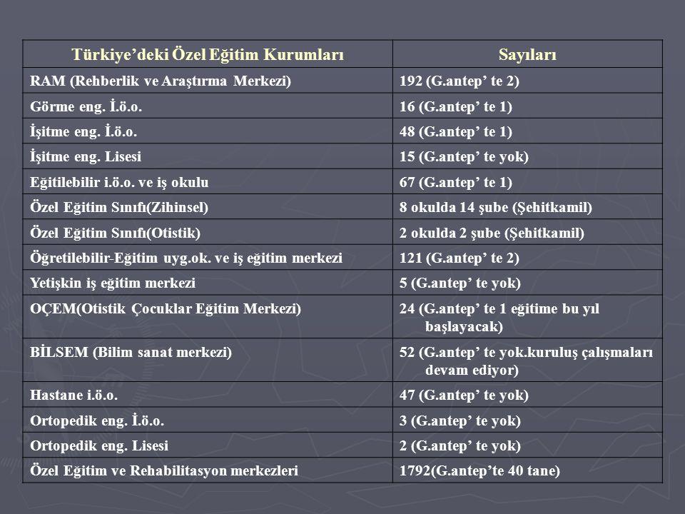 Türkiye'deki Özel Eğitim Kurumları