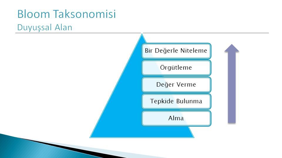 Bloom Taksonomisi Duyuşsal Alan