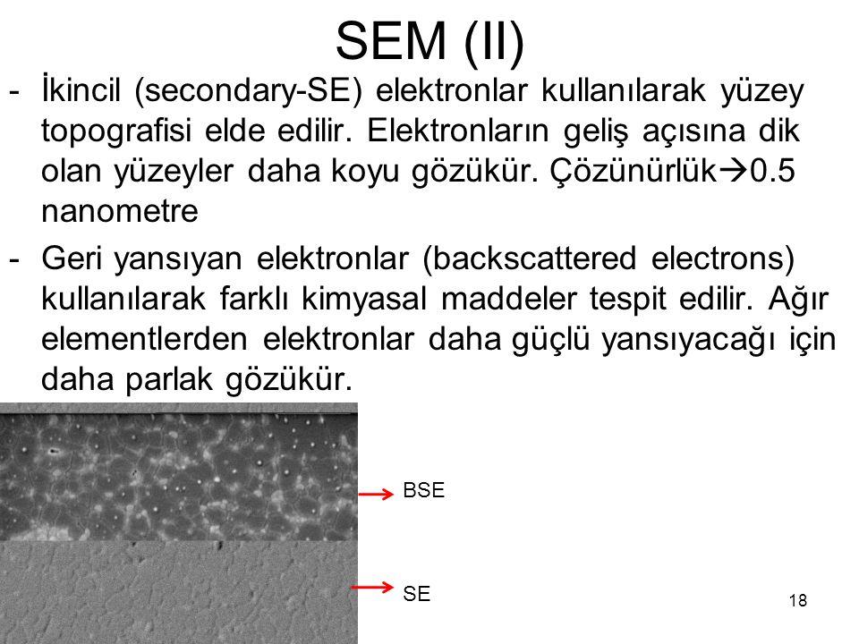 SEM (II)