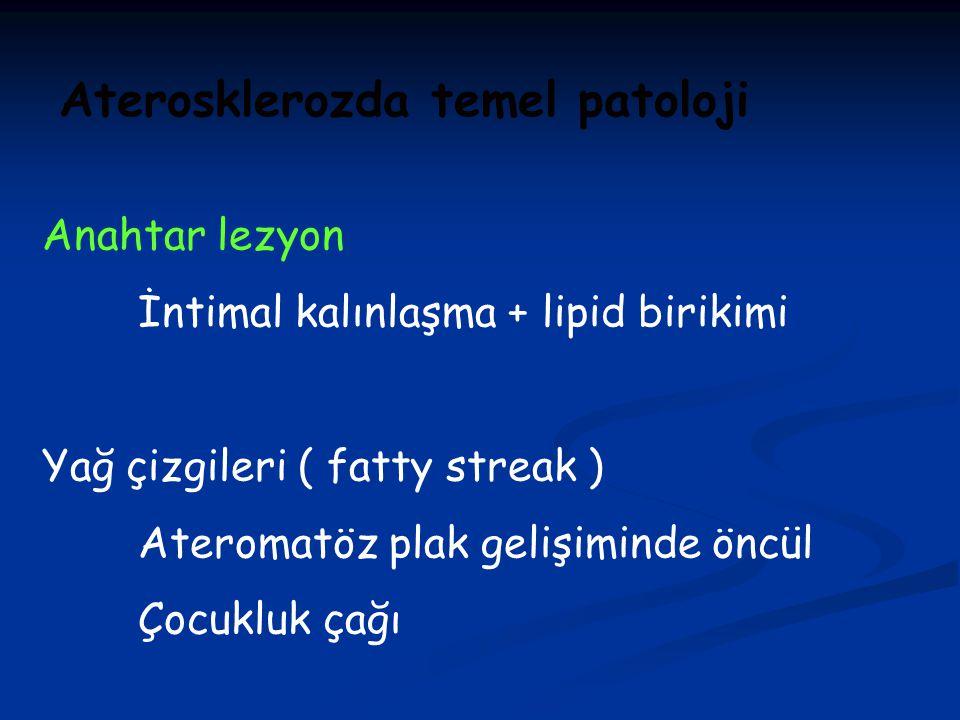 Aterosklerozda temel patoloji