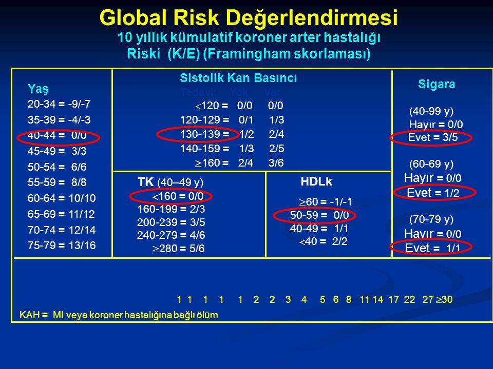 Global Risk Değerlendirmesi