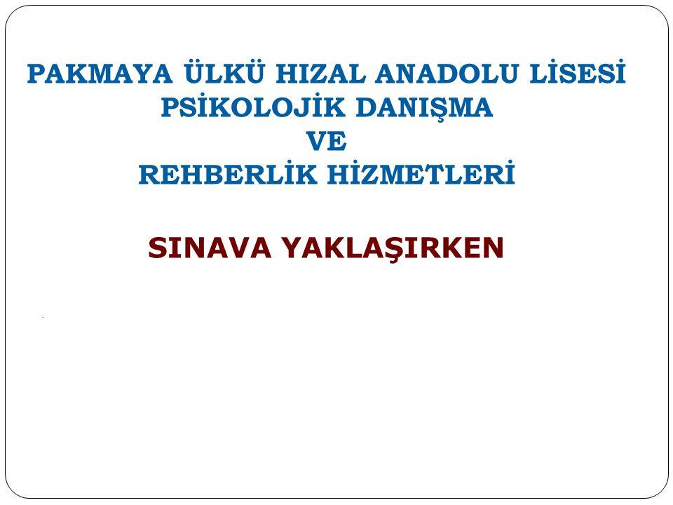 PAKMAYA ÜLKÜ HIZAL ANADOLU LİSESİ