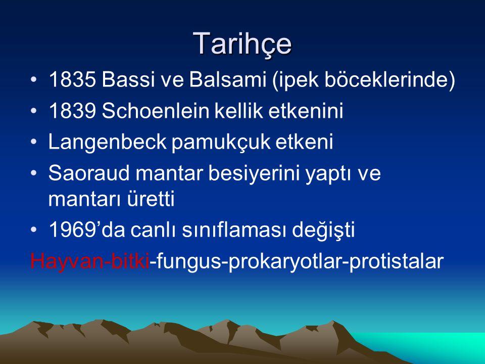 Tarihçe 1835 Bassi ve Balsami (ipek böceklerinde)