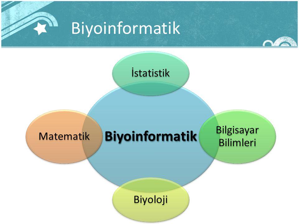 Biyoinformatik Biyoinformatik İstatistik Bilgisayar Bilimleri Biyoloji