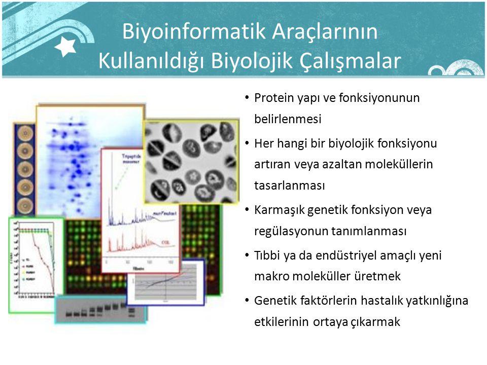 Biyoinformatik Araçlarının Kullanıldığı Biyolojik Çalışmalar