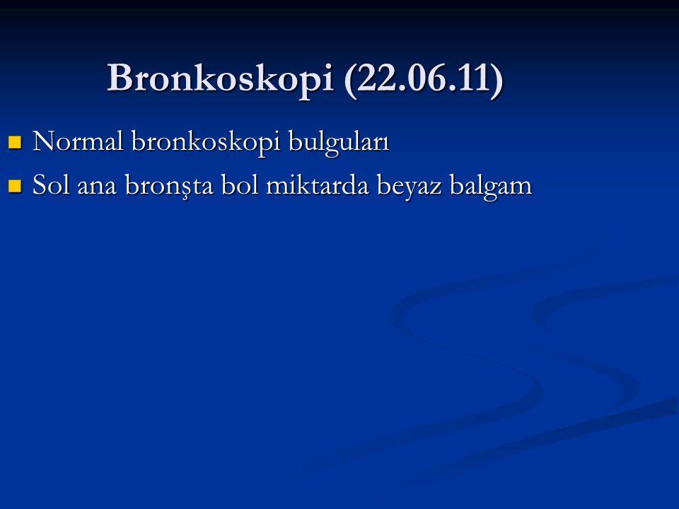 Bronkoskopi (22.06.11) Normal bronkoskopi bulguları