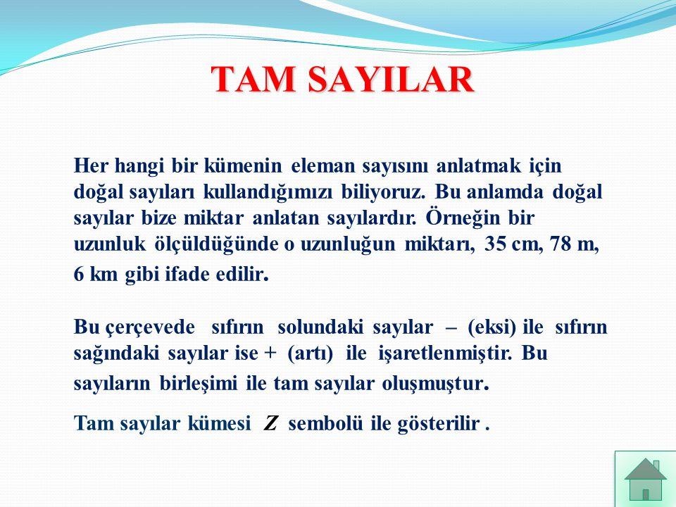 TAM SAYILAR