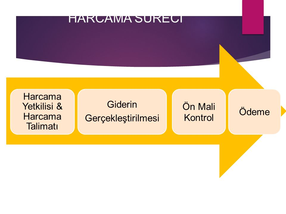 Harcama Yetkilisi & Harcama Talimatı