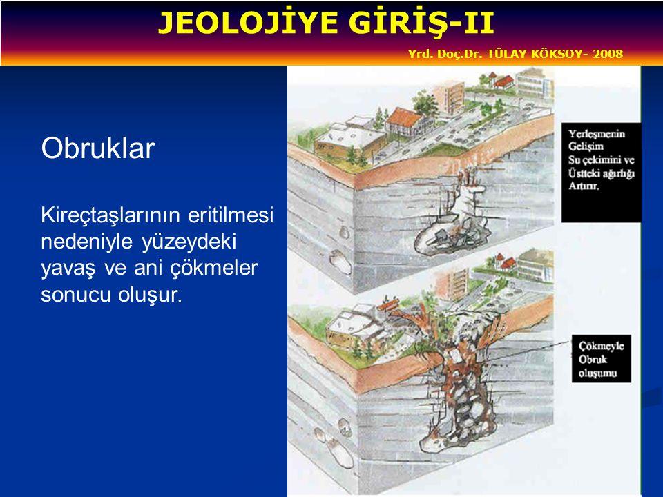 Yrd. Doç.Dr. TÜLAY KÖKSOY- 2008