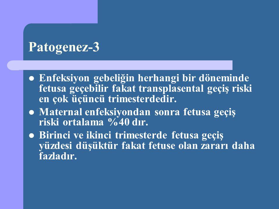 Patogenez-3 Enfeksiyon gebeliğin herhangi bir döneminde fetusa geçebilir fakat transplasental geçiş riski en çok üçüncü trimesterdedir.