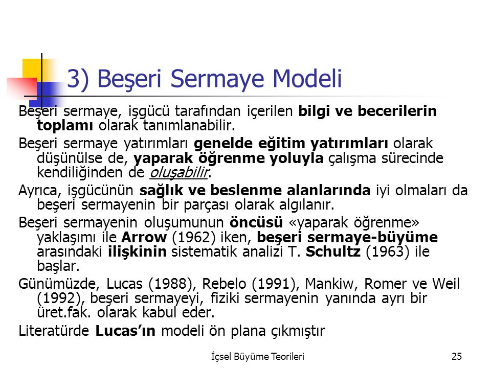 3) Beşeri Sermaye Modeli