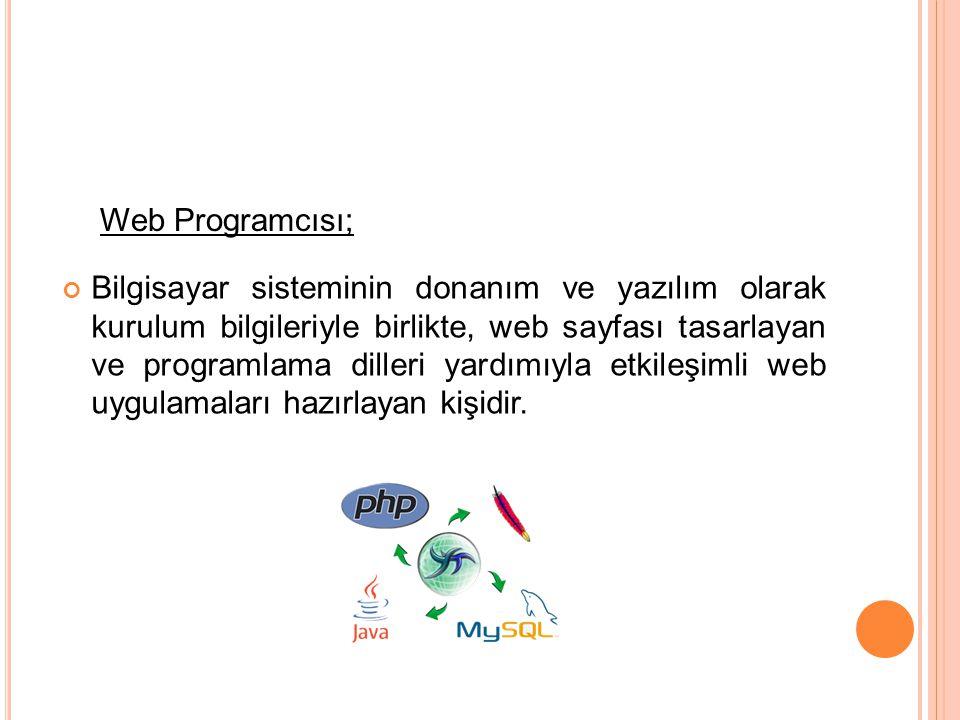 Web Programcısı;