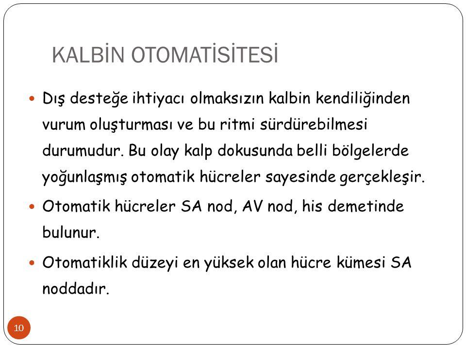 KALBİN OTOMATİSİTESİ