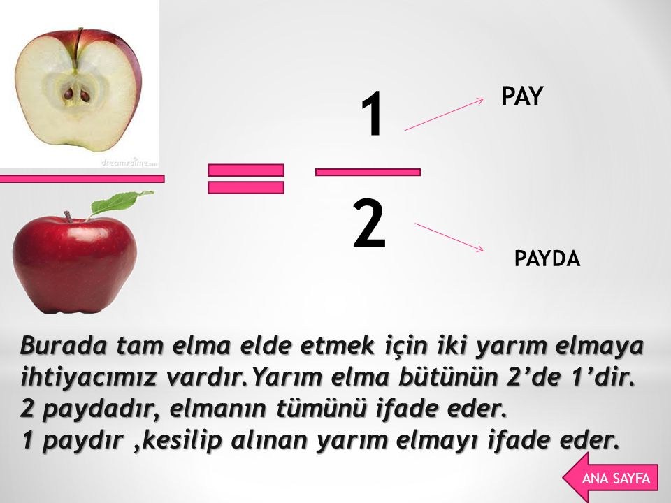 1 PAY. 2. PAYDA.