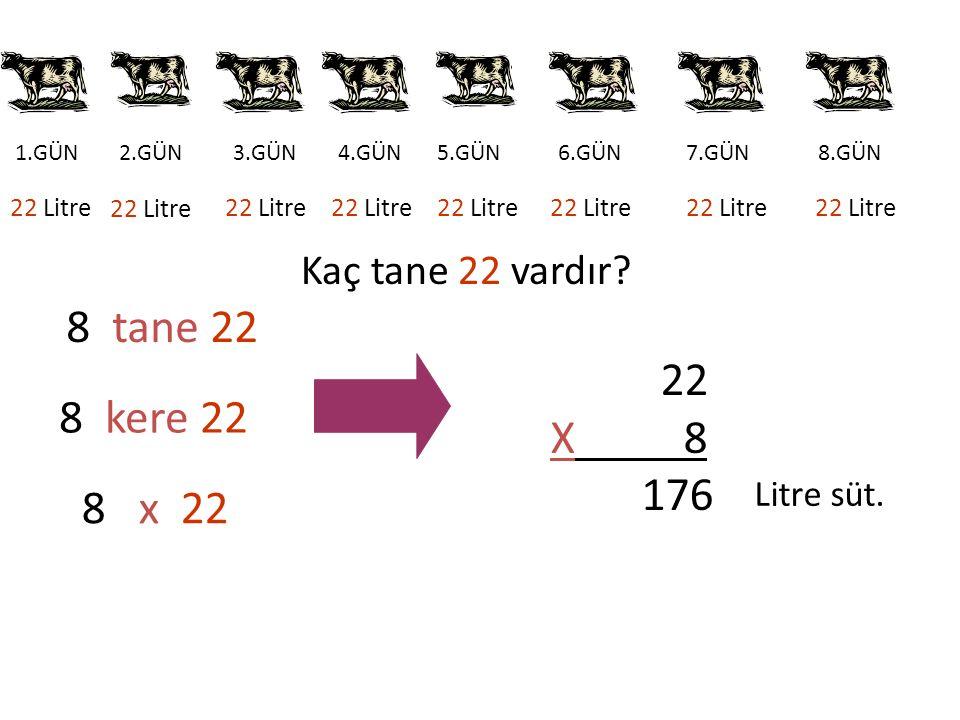 8 tane 22 X 8 8 kere 22 176 8 x 22 Kaç tane 22 vardır Litre süt.