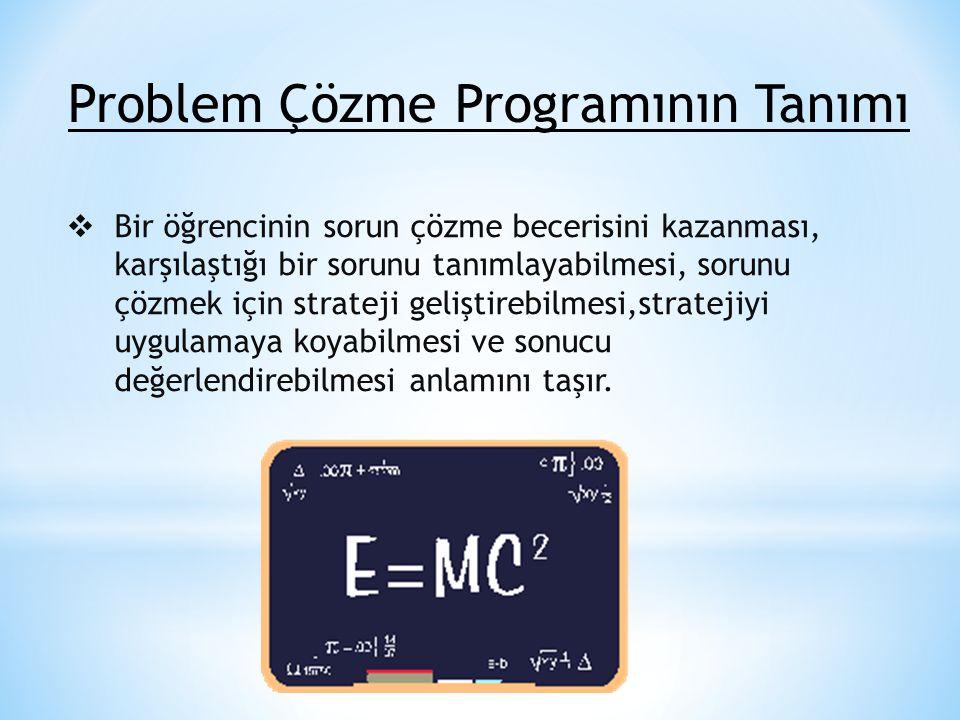 Problem Çözme Programının Tanımı