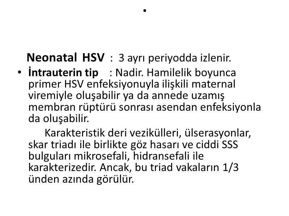 . Neonatal HSV : 3 ayrı periyodda izlenir.
