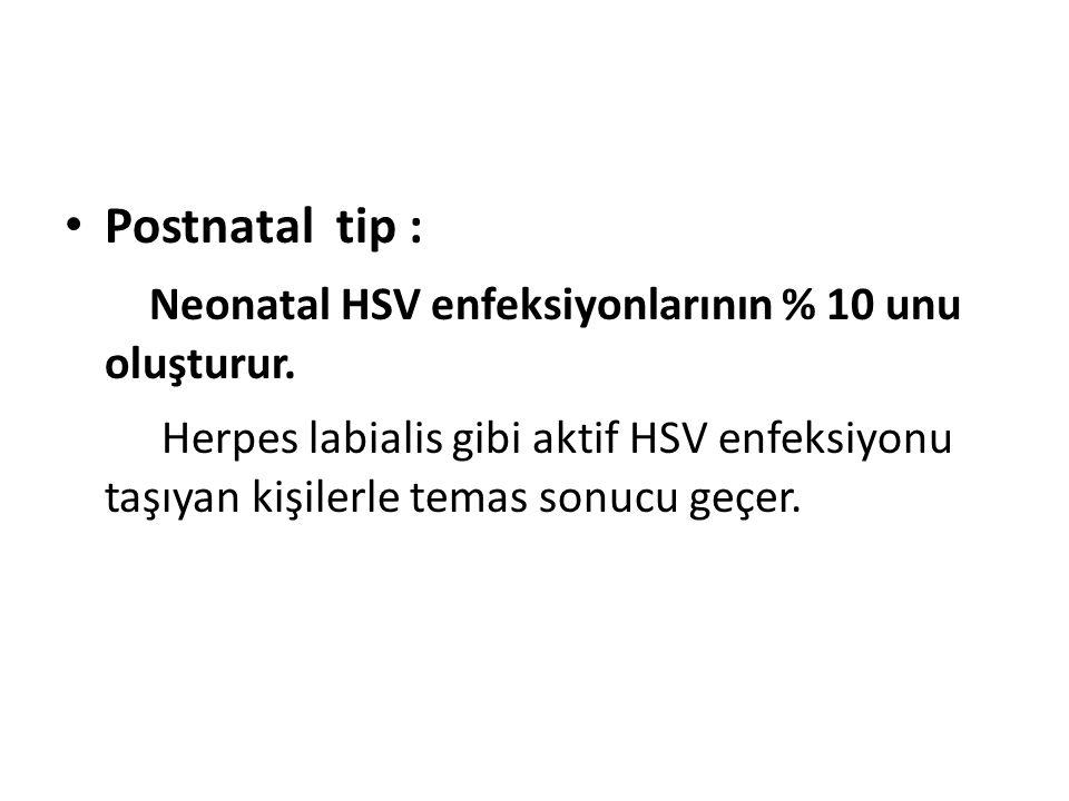 Postnatal tip : Neonatal HSV enfeksiyonlarının % 10 unu oluşturur.