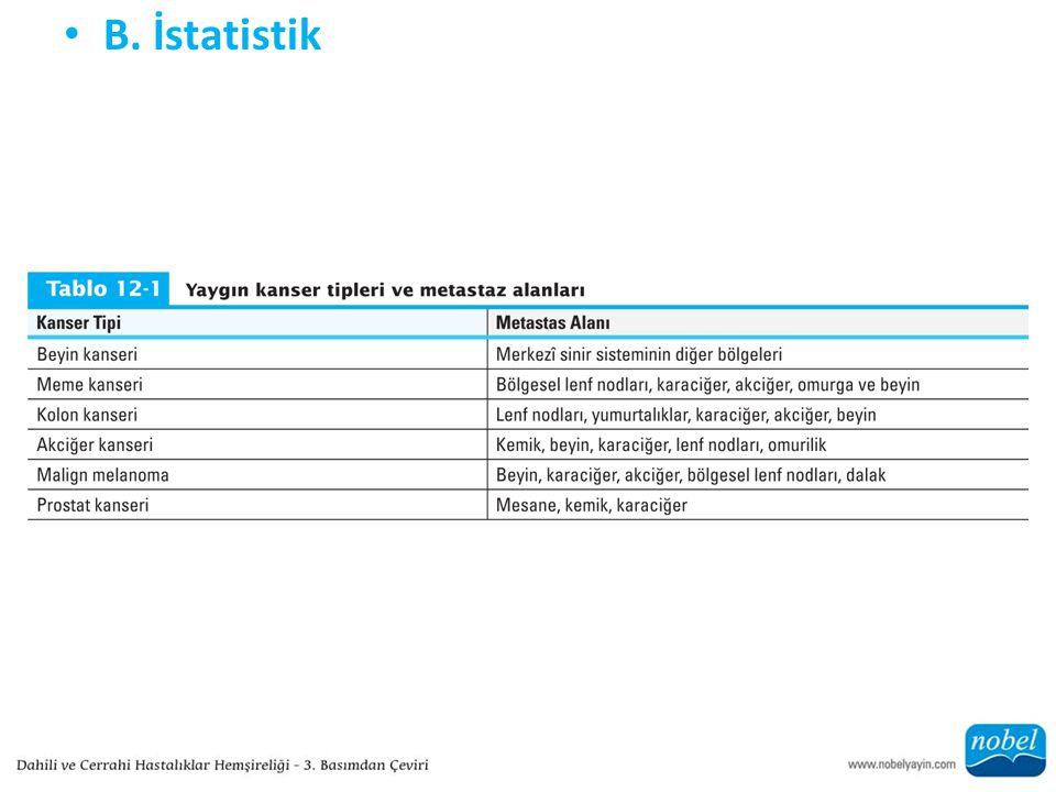 B. İstatistik