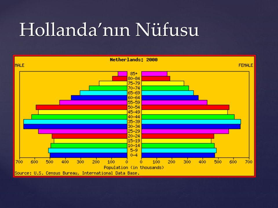 Hollanda'nın Nüfusu