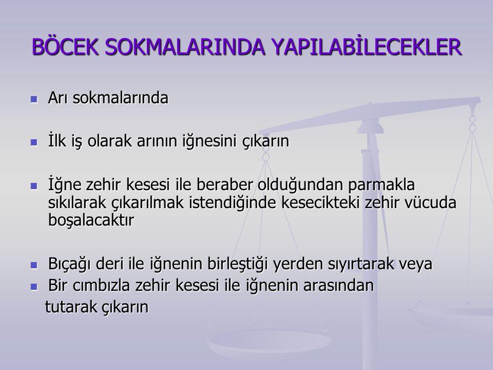 BÖCEK SOKMALARINDA YAPILABİLECEKLER