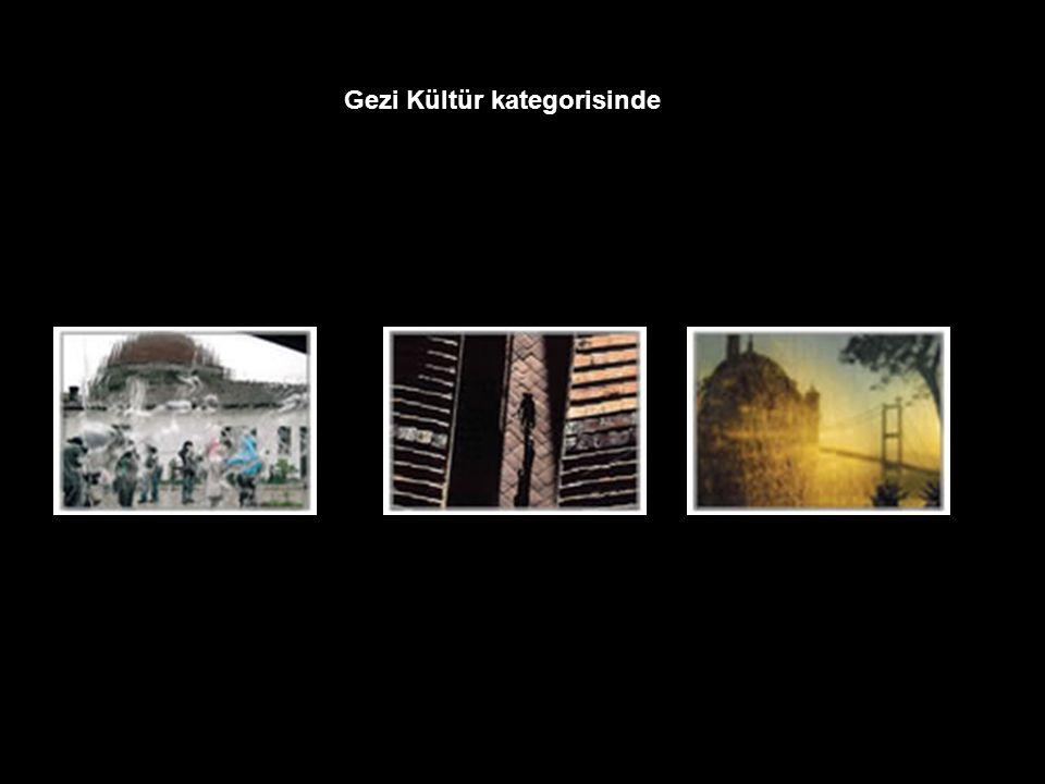 Gezi Kültür kategorisinde