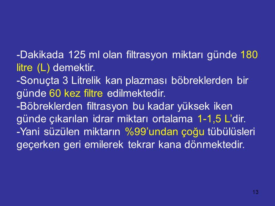 -Dakikada 125 ml olan filtrasyon miktarı günde 180 litre (L) demektir