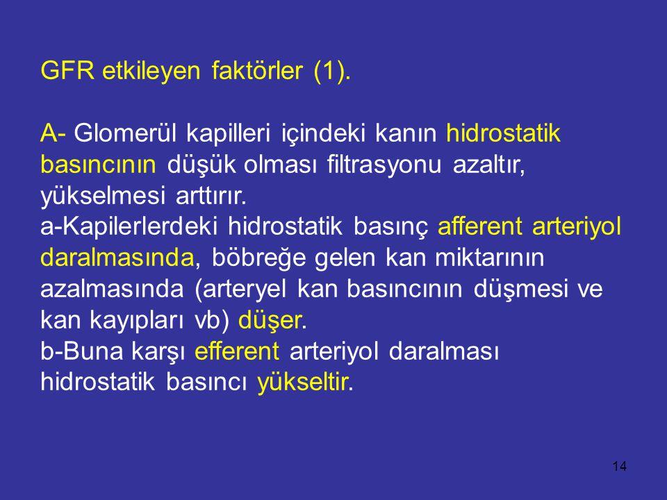 GFR etkileyen faktörler (1)