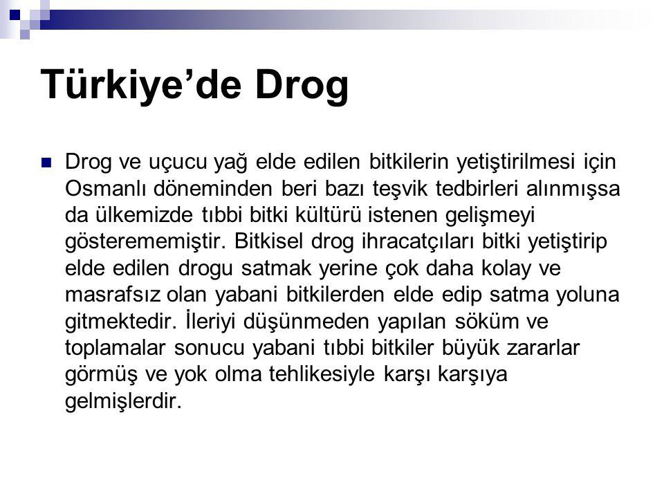 Türkiye'de Drog