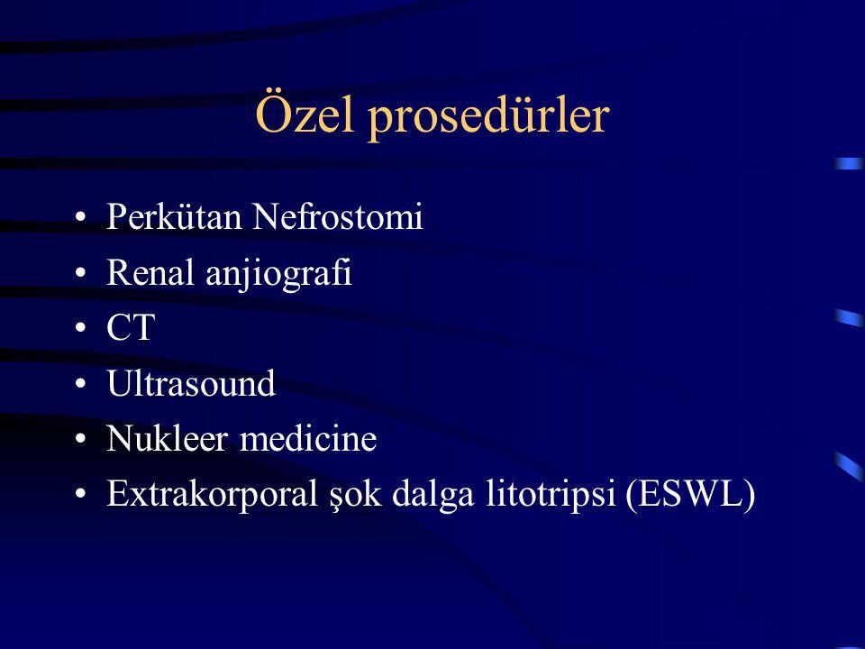 Özel prosedürler Perkütan Nefrostomi Renal anjiografi CT Ultrasound