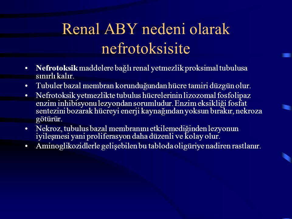 Renal ABY nedeni olarak nefrotoksisite