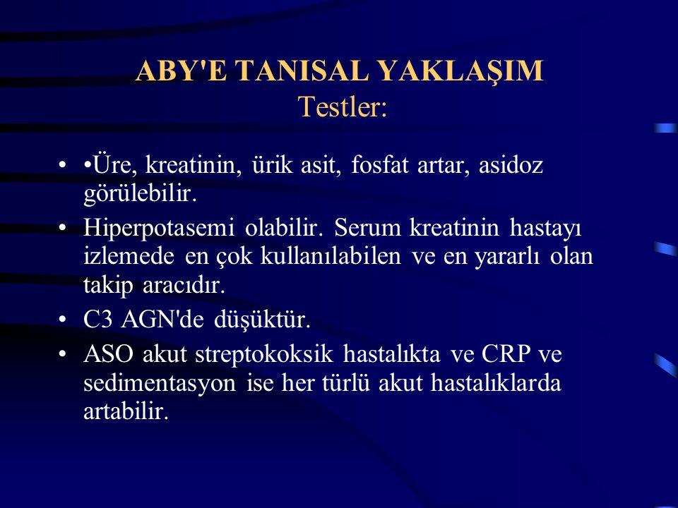 ABY E TANISAL YAKLAŞIM Testler: