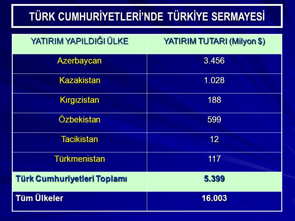 TÜRK CUMHURİYETLERİ'NDE TÜRKİYE SERMAYESİ