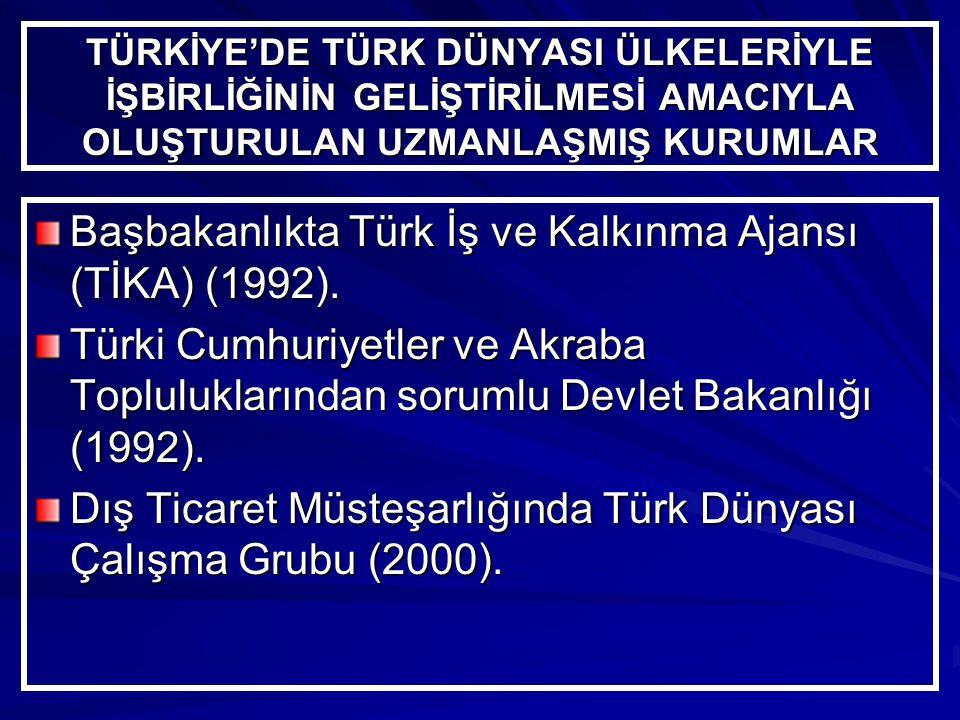 Başbakanlıkta Türk İş ve Kalkınma Ajansı (TİKA) (1992).
