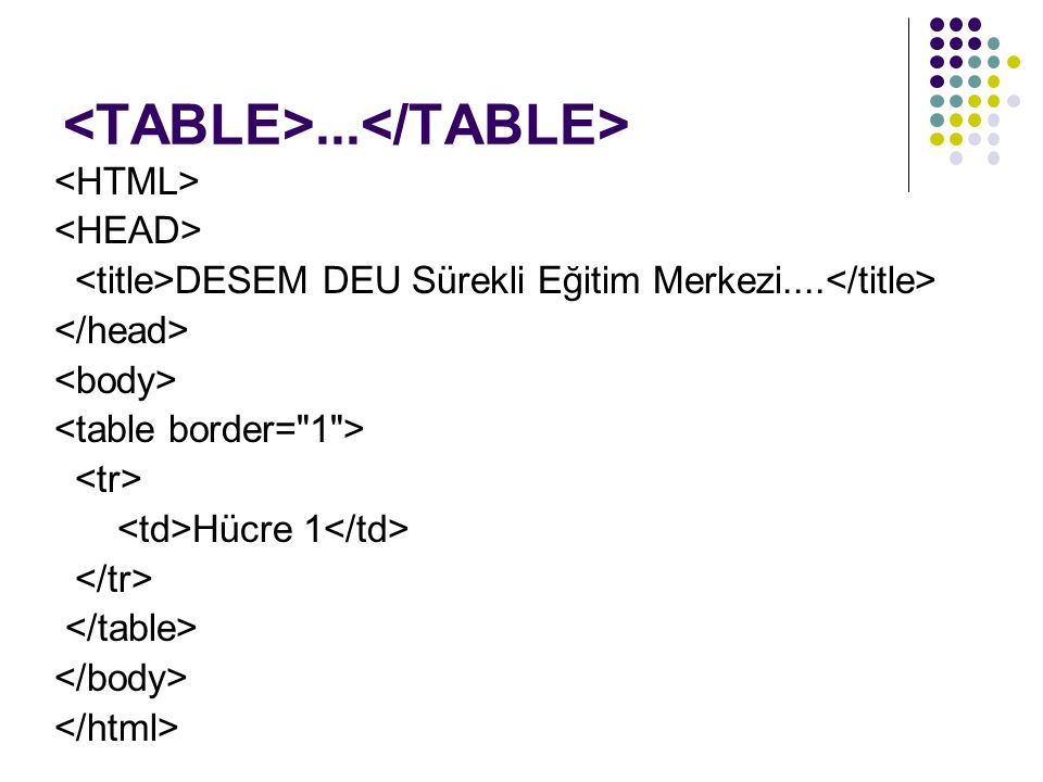 <TABLE>...</TABLE>