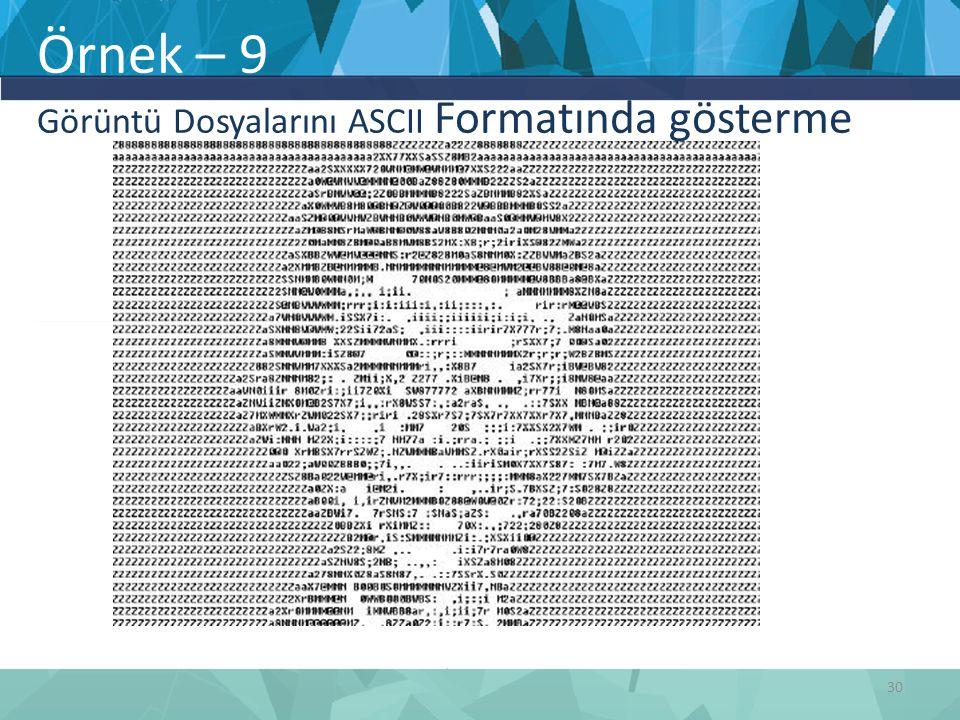 Örnek – 9 Görüntü Dosyalarını ASCII Formatında gösterme