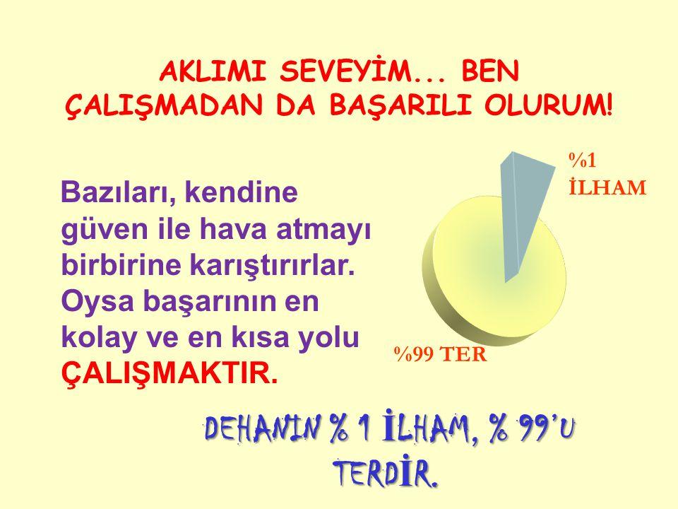 DEHANIN % 1 İLHAM, % 99'U TERDİR.