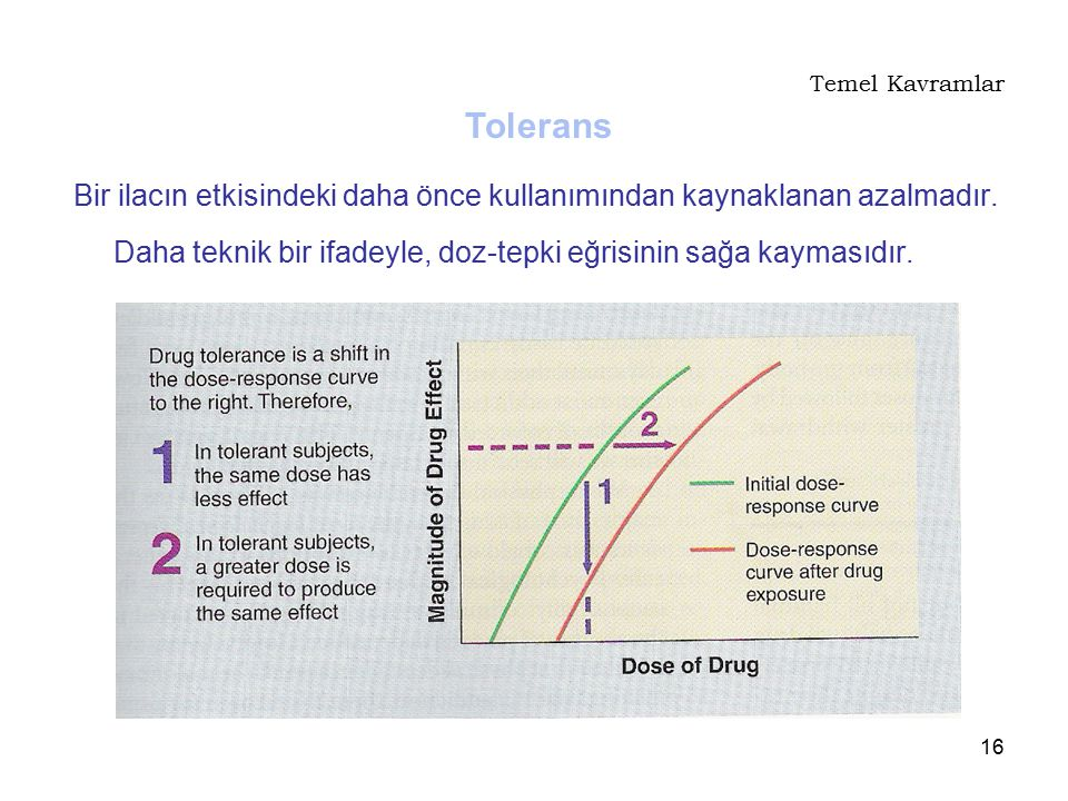 Temel Kavramlar Tolerans. Bir ilacın etkisindeki daha önce kullanımından kaynaklanan azalmadır.