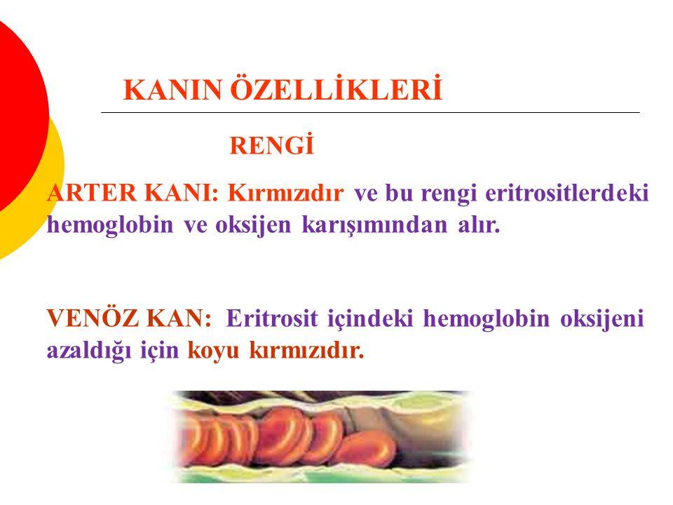 KANIN ÖZELLİKLERİ RENGİ