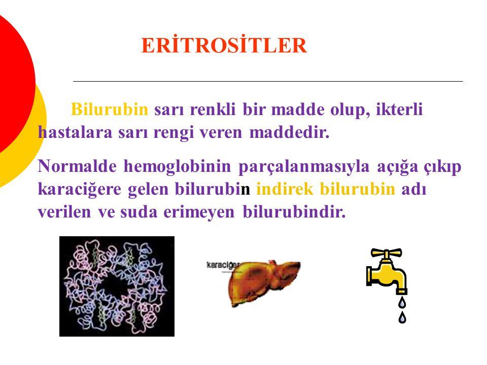 ERİTROSİTLER Bilurubin sarı renkli bir madde olup, ikterli hastalara sarı rengi veren maddedir.