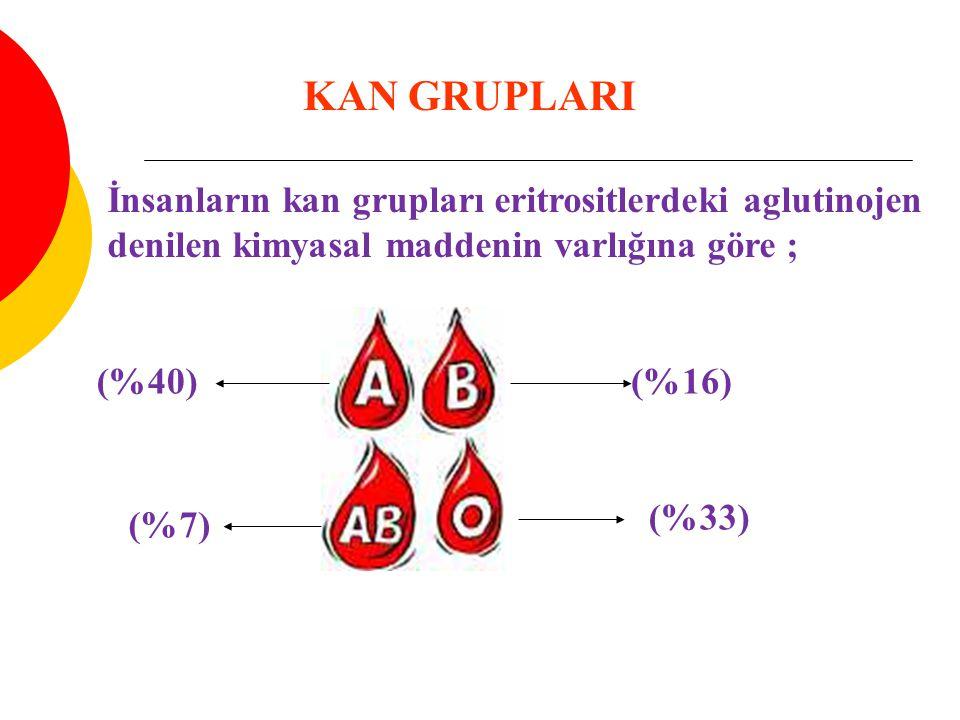 KAN GRUPLARI İnsanların kan grupları eritrositlerdeki aglutinojen denilen kimyasal maddenin varlığına göre ;