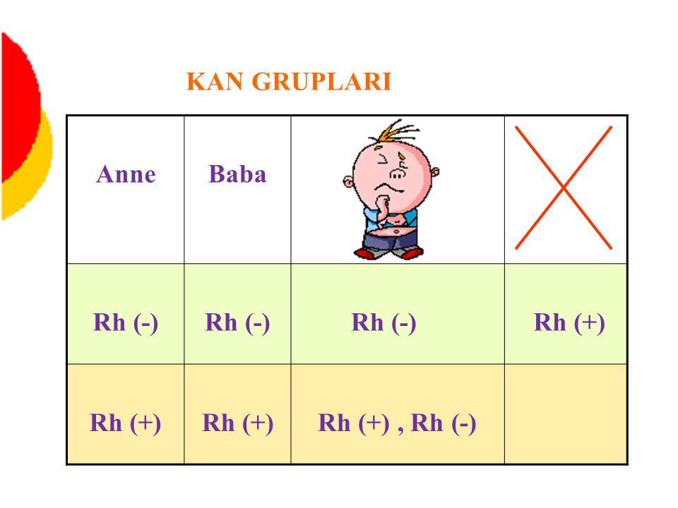 KAN GRUPLARI Anne Baba Rh (-) Rh (+) Rh (+) , Rh (-)