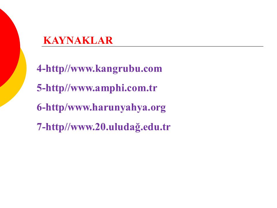 KAYNAKLAR 4-http//www.kangrubu.com. 5-http//www.amphi.com.tr.
