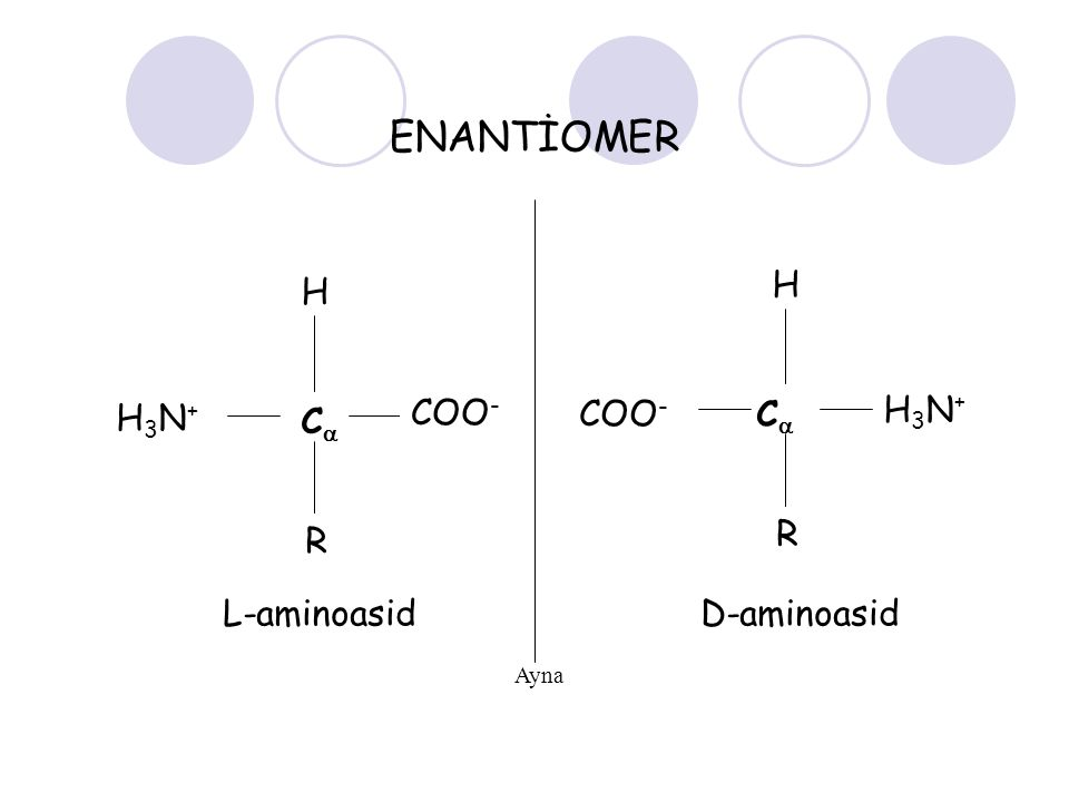 ENANTİOMER H H C C COO- COO- H3N+ H3N+ R R L-aminoasid D-aminoasid
